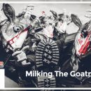 Milking The Goatmachine / Anal Fister